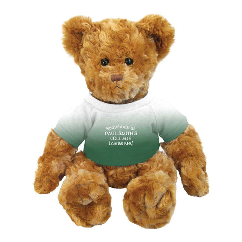 Teddy Bear, 14 inches, Brown with green & white shirt, Somebody at Paul Smith's College Loves Me!