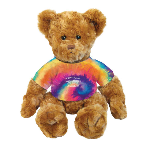 Teddy Bear, 14 inches, Brown with Tye Dye Shirt, Somebody at Paul Smith's College Loves Me!