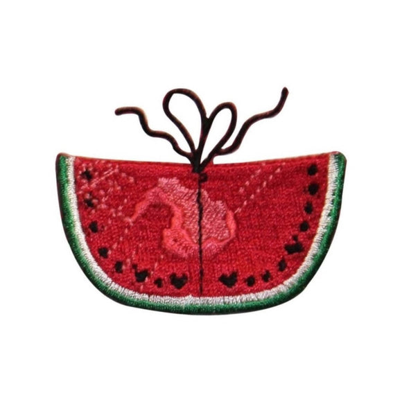 ID 1200B Watermelon Tied Patch Summer Lunch Picnic Embroidered Iron On Applique