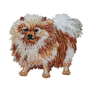 ID 2758 Pomeranian Toy Dog Patch Breed Pet Puppy Embroidered Iron On Applique
