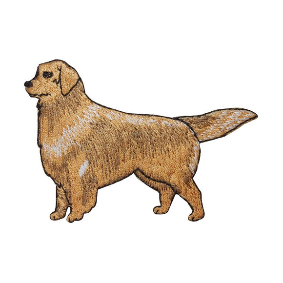 ID 2764 Golden Retriever Patch Dog Puppy Breed Pet Embroidered Iron On Applique
