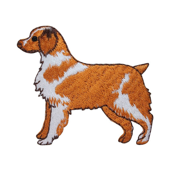 ID 2795 Australian Shepherd Dog Patch Puppy Breed Embroidered Iron On Applique