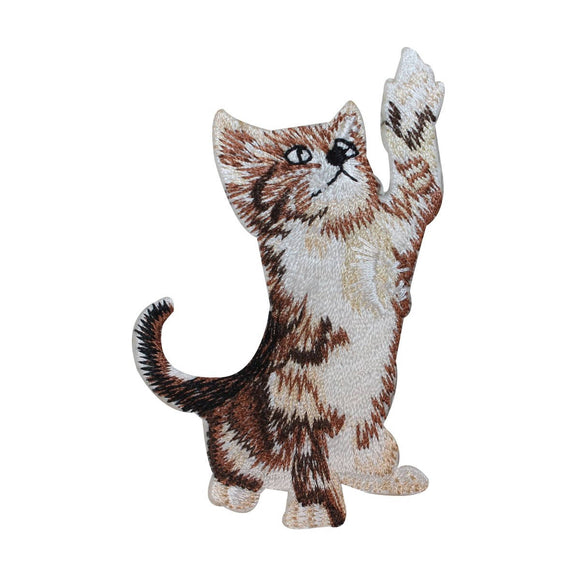 ID 2901 Kitten Playing Patch Tabby Kitten Cat Pet Embroidered Iron On Applique
