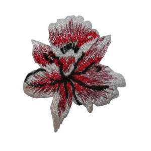 ID 6707 Red Orchid Blossom Patch Flower Plant Iris Embroidered Iron On Applique