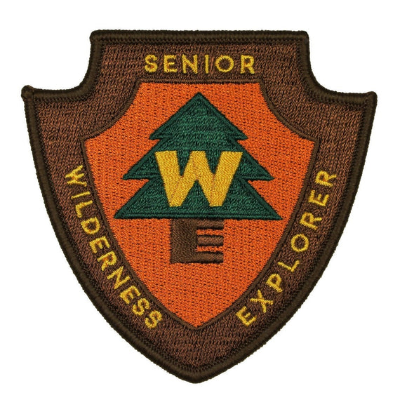 Senior Wilderness Explorer Disney Patch Scout Badge Up Craft Iron On Applique