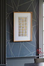 Load image into Gallery viewer, Metallic Fossil Study Framed Art