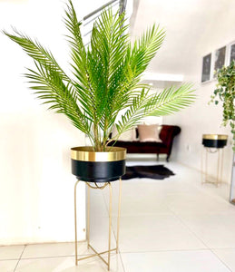 Black & Gold Planter