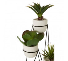 Load image into Gallery viewer, Set Of 3 Succulents With Metal Stand