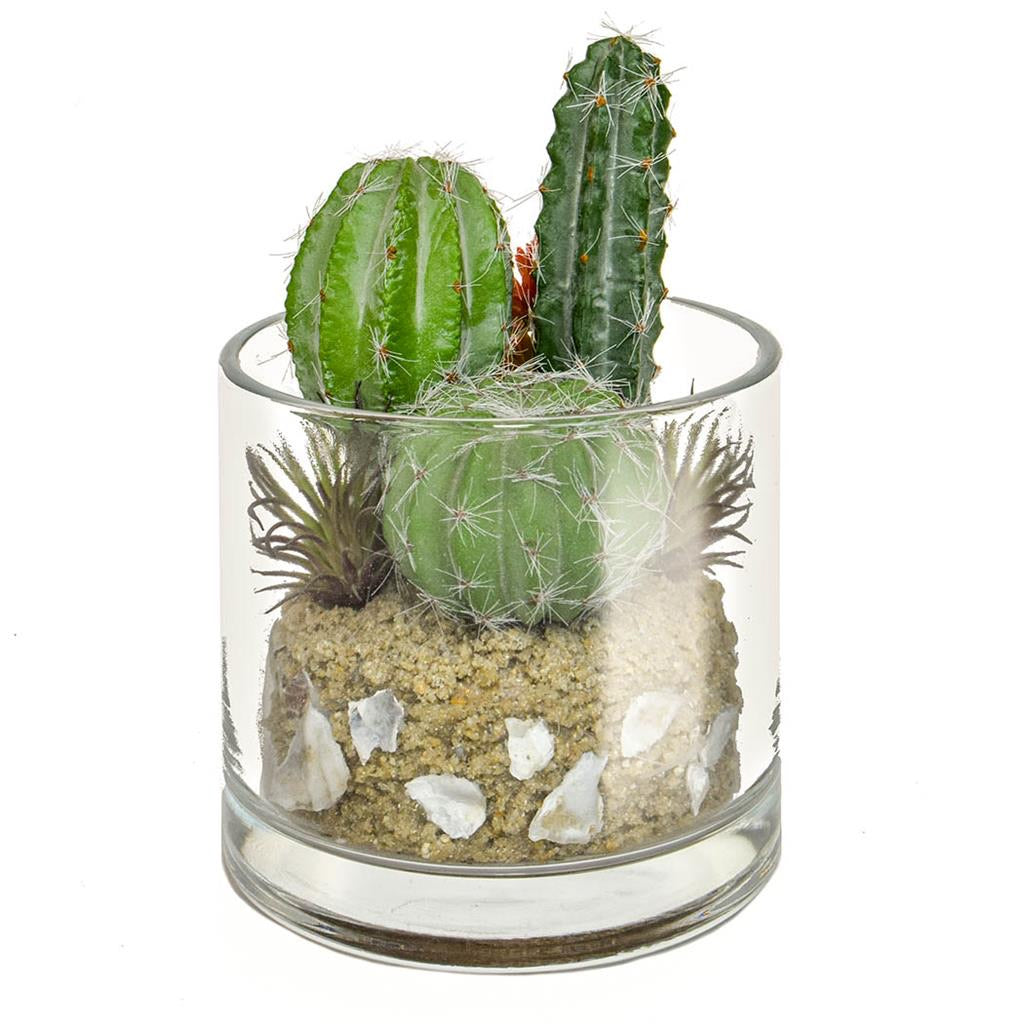 TROPICAL CACTUS MIX IN GLASS VASE