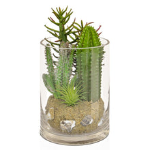Load image into Gallery viewer, TROPICAL CACTUS MIX IN GLASS VASE