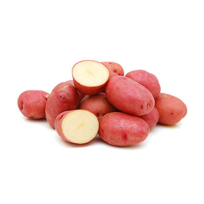 Red Chat Potato