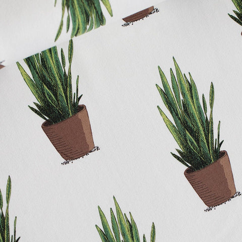 Sansevieria - Cotton Lawn - Off-White - See You at Six