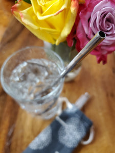 Reusable Stainless Steel Straw Packs