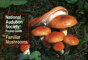 Audubon's Pocket Guide to Familiar Mushrooms