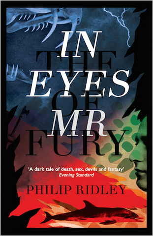 In the Eyes of Mr. Fury by Philip Ridley