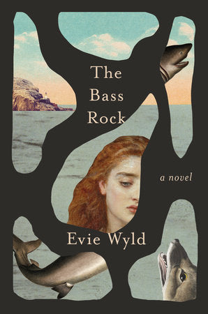 The Bass Rock by Evie Wyld - hardcvr