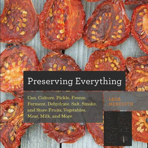 Preserving Everything by Leda Meredith