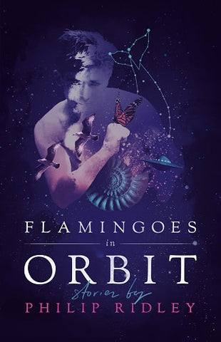 Flamingoes in Orbit by Philip Ridley