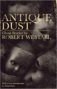 Antique Dust by Robert Westall