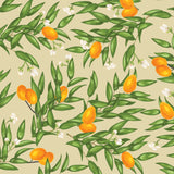 illustrated green leaves white flowers and orange citrus on tan background wallpaper peel and stick pattern