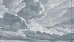 hand drawn light blue cloud mural illustration peel and stick wallpaper 14x8