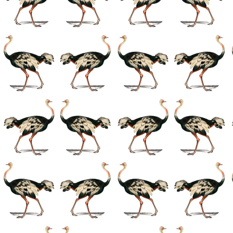 colored detailed ostrich design pattern on white background Removable Peel and Stick Wallpaper