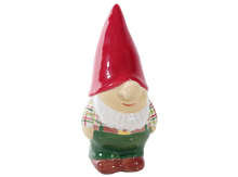 Load image into Gallery viewer, Nate the Gnome