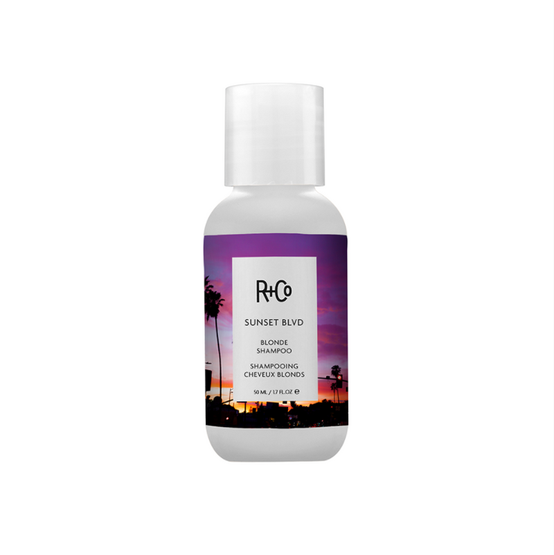 R + Co BLVD Shampoo