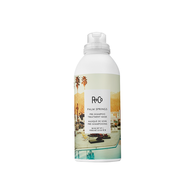 R + Co Balloon Dry Volume Spray