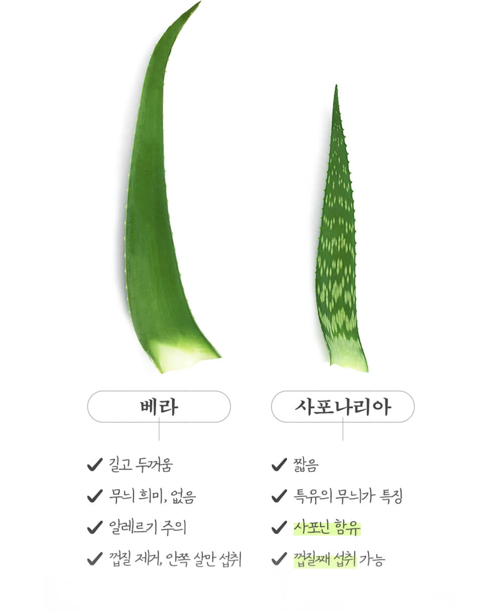 kdy-aloe-saponaria-pill-product-explanation-ingredient