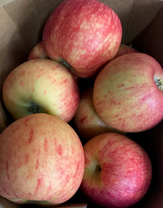 Apples new season ROYAL GALA (500g)
