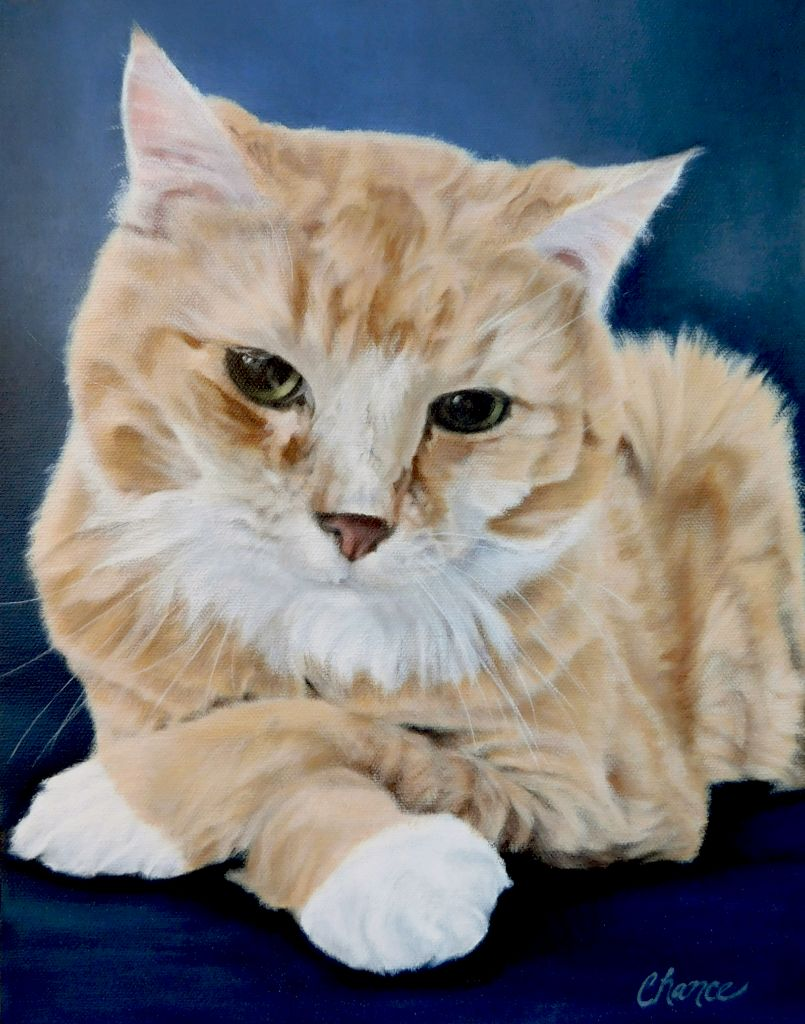 Kitty Fine Art Print
