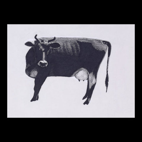Cow Original Charcoal & Pencil Sketch