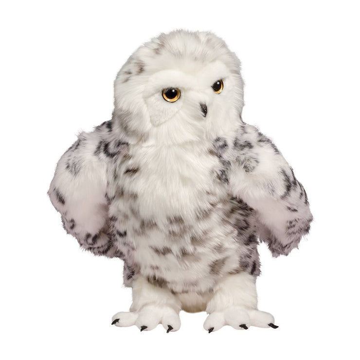 Shimmer the Snowy Owl