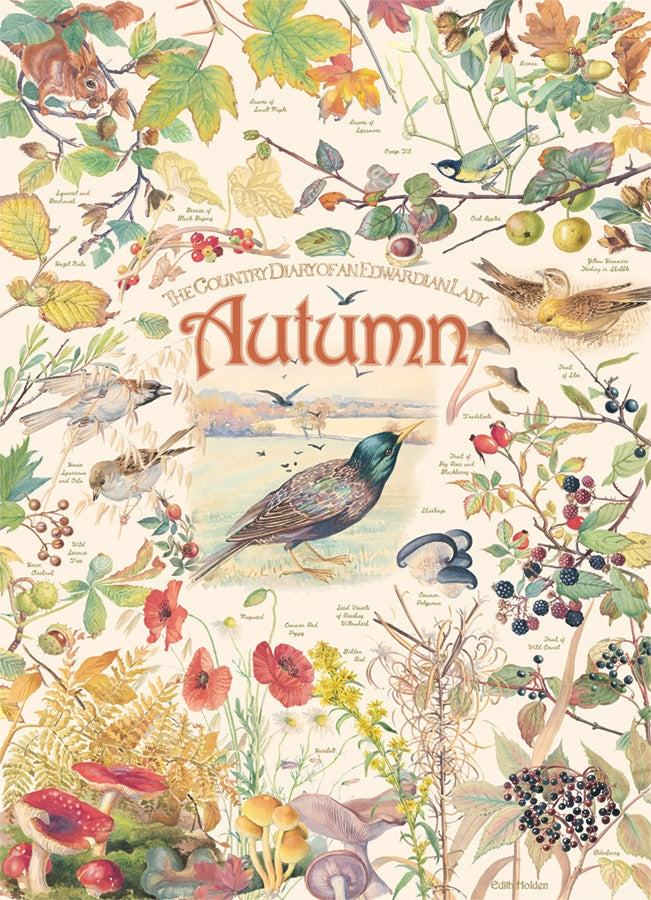 Country Diary of an Edwardian Lady - Autumn, 1000 piece puzzle