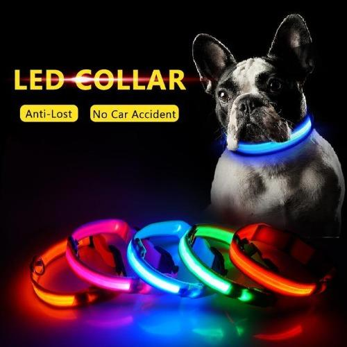 Halo Protection™️- Night Safety LED Lighted Dog Collar - Trendy World