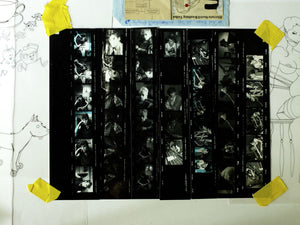 Stray Cats (Mixed Media Art Contact Sheet - Second Design)