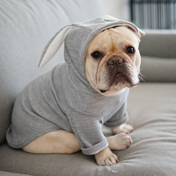 Bunny Hoodie Jacket for Frenchies