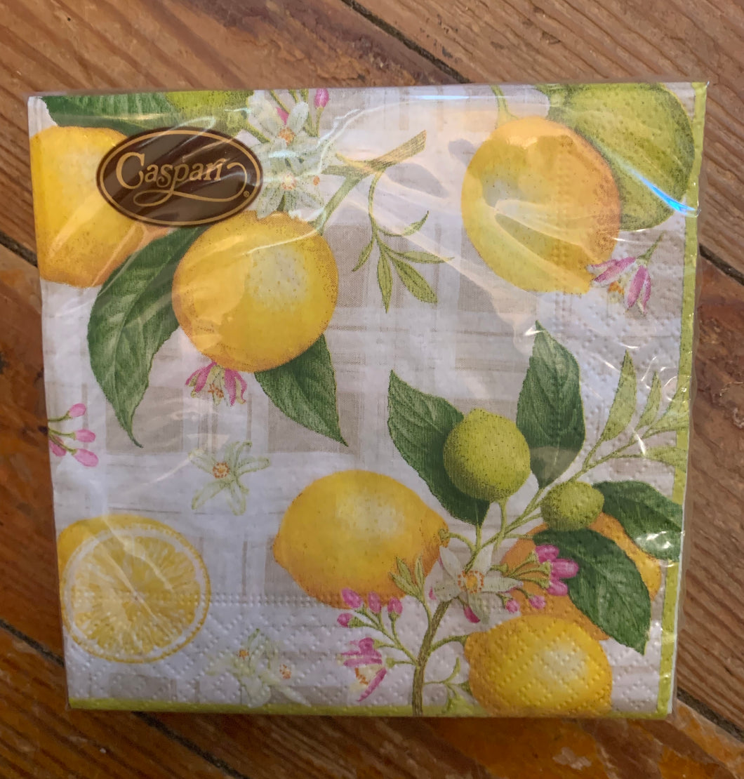 Caspari Cocktail Napkins