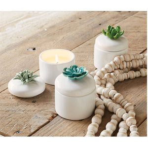 Mudpie Citronella Candles