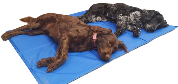 Pet Cooling Mat XL