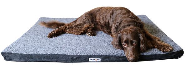 TAILWAGGERS Heated Pet Mat