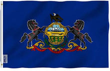 Load image into Gallery viewer, Pennsylvania State Flag - 3x5FT