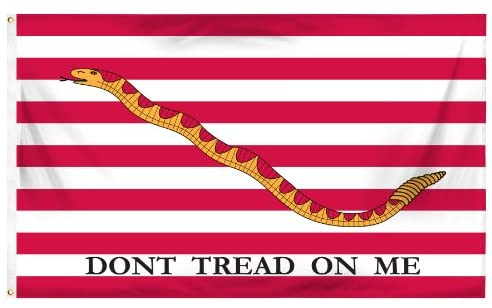First Navy Jack Flag of the United States