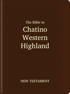 Chatino, Western Highland (Cha' jna'a) Bible - New Testament
