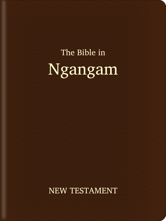 Ngangam Bible - New Testament