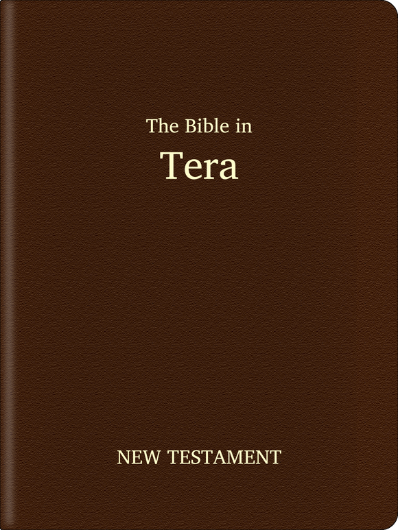 Tera (Nyimatli) Bible - New Testament