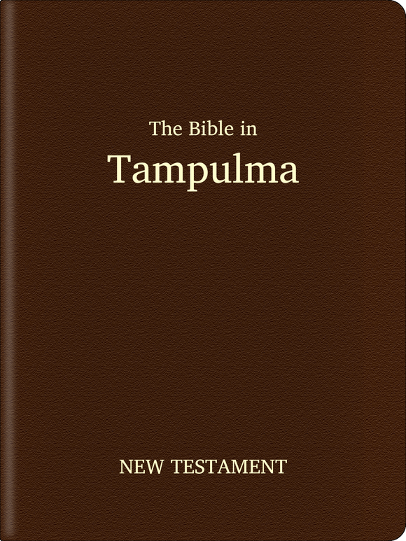 Tampulma Bible - New Testament