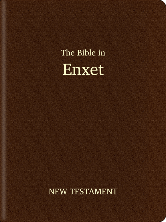 Enxet Bible - New Testament