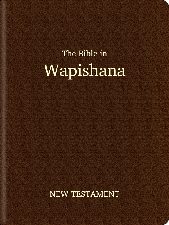 Wapishana Bible - New Testament